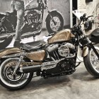 custombike2010-1